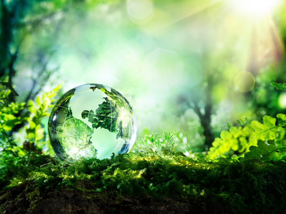 The Left-Green movement supports the environment