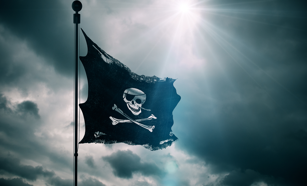 The Pirate Party is a relative newcomer to Icelandic politics