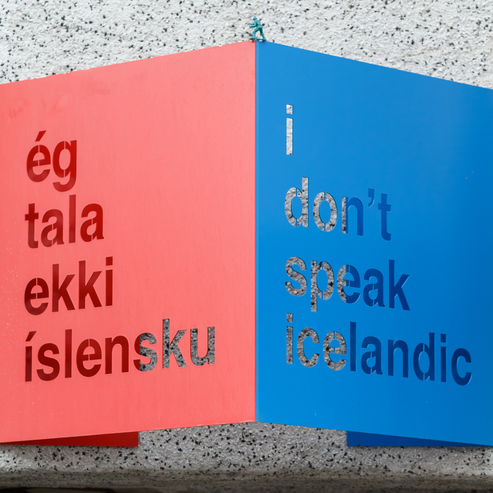 "How to say ""I don't speak Icelandic"" in the native language pink and blue sign"